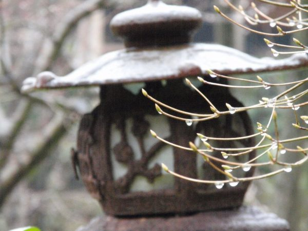 WHAT IS THE MEANING OF WABI SABI